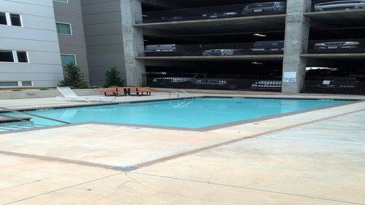 Elm pool