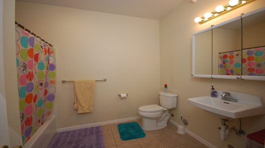 1010 bluemont z bath