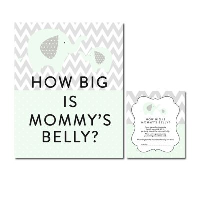 Baby-Shower-Mint-Green-Chevron-Gray-Elephant-Mommys-Belly