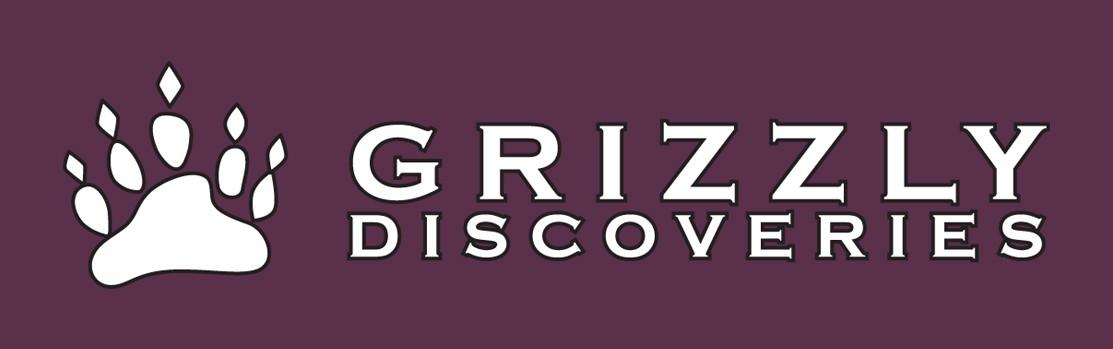 Grizzly Discoveries Inc. (OTCQB:GZDIF)