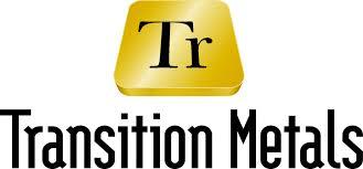 Transition Metals Corp. (OTC:TNTMF)