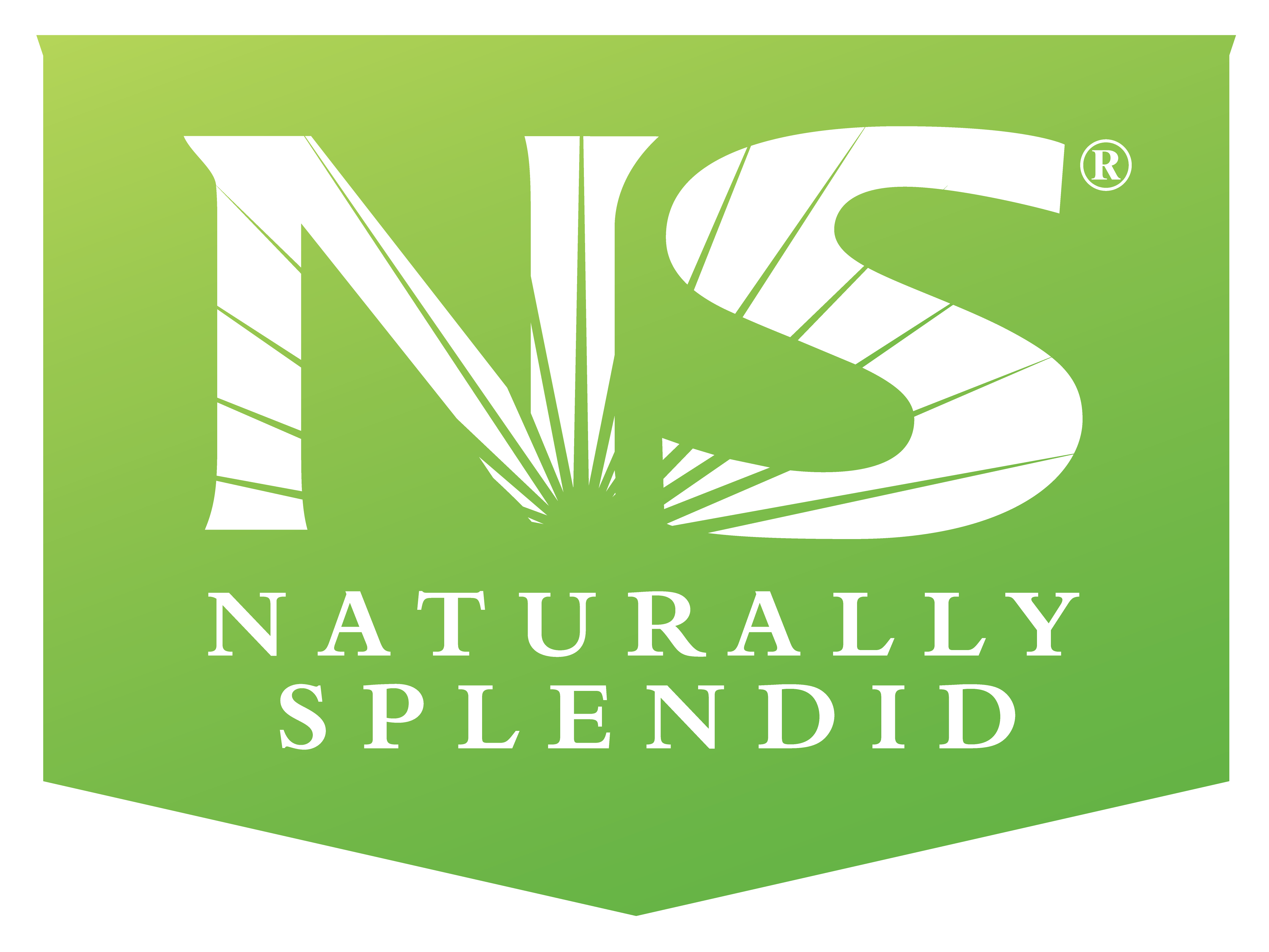 Naturally Splended Enterprises LTD. (OTCQB:NSPDF)