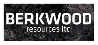 Berkwood Resources Ltd. (TSXV:BKR)
