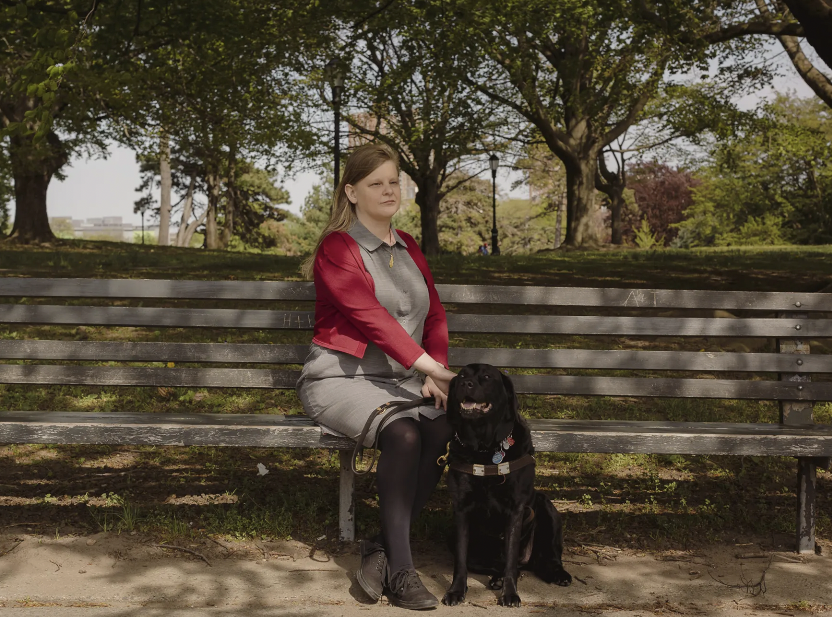 Woman sitting on a park bench with a service dog.