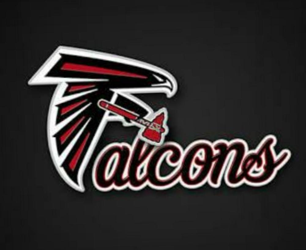 FEARLESS FALCONS