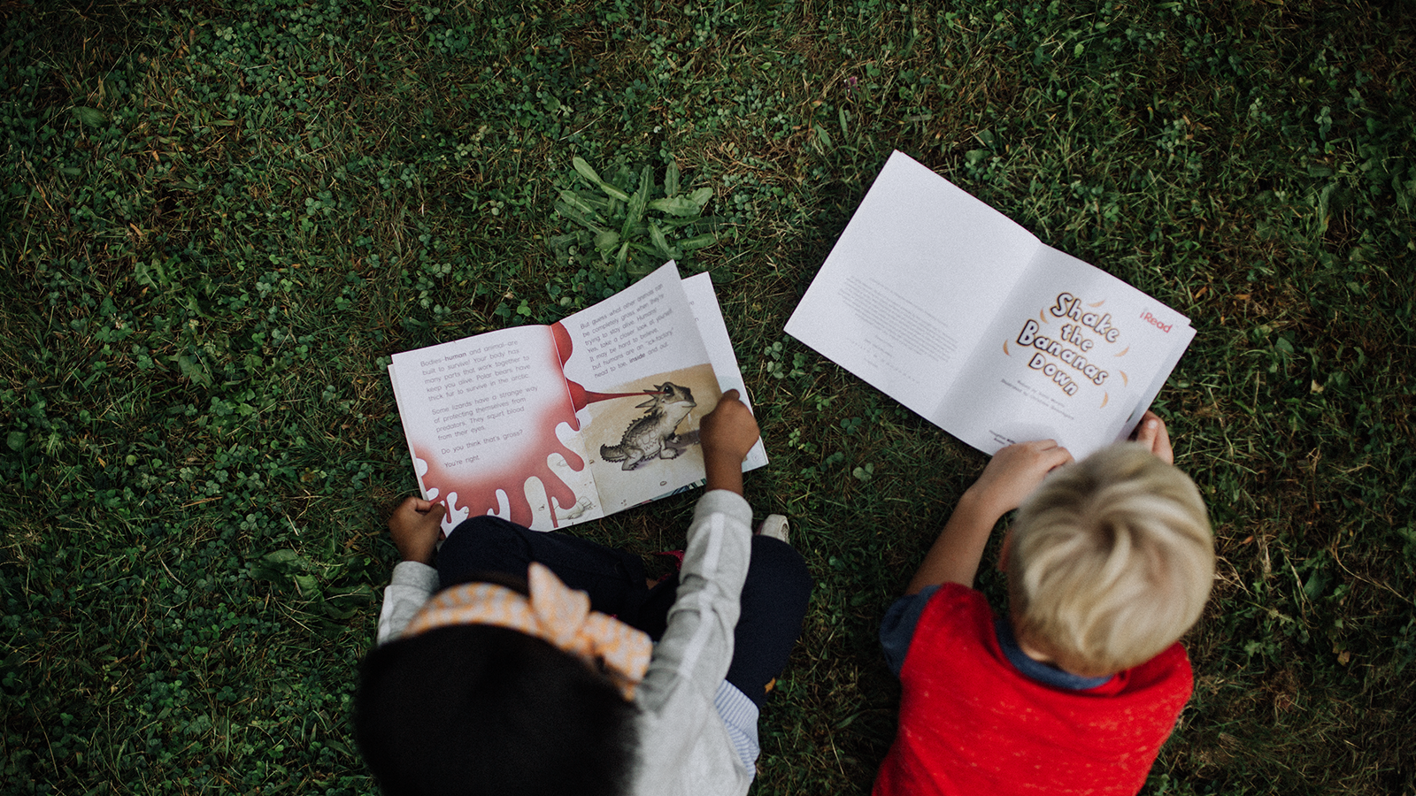 Tips to Develop an Impactful K–3 Literacy Solution in Your District