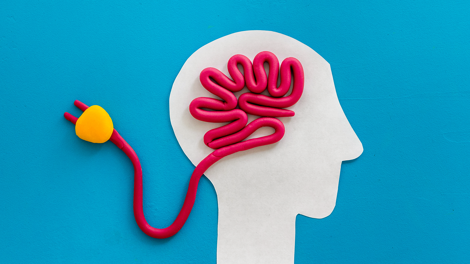 Understand How the Human Brain Works to Build Classroom Routines