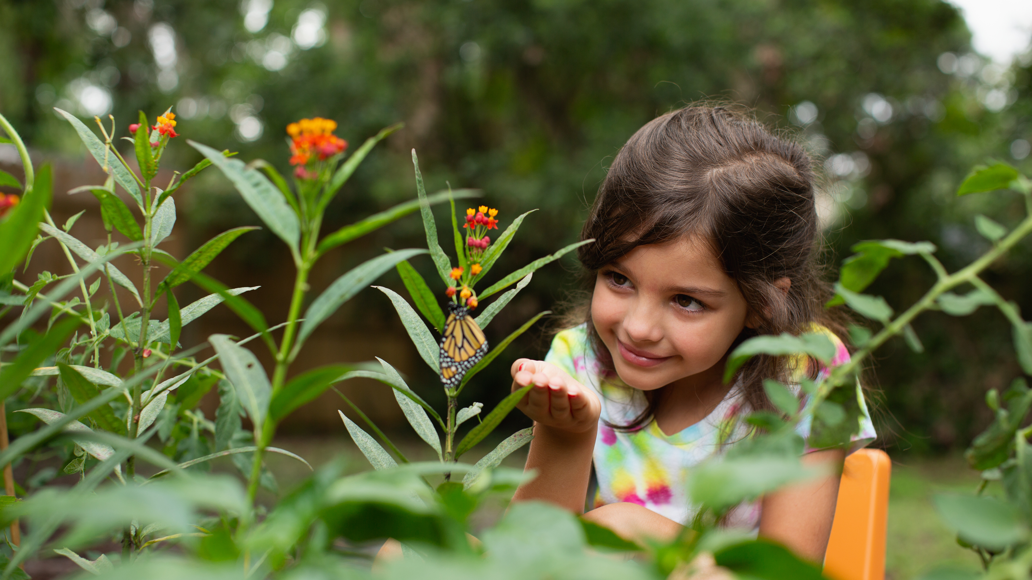 8 Earth Day Activities and Games for Elementary Students