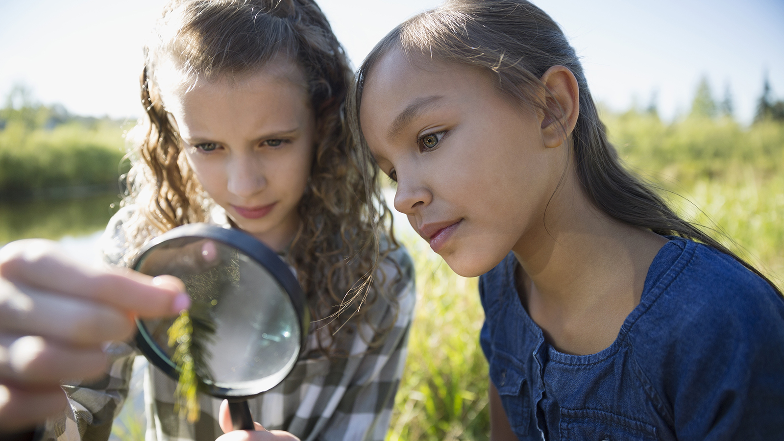 4 Fun Earth Day Activities for School