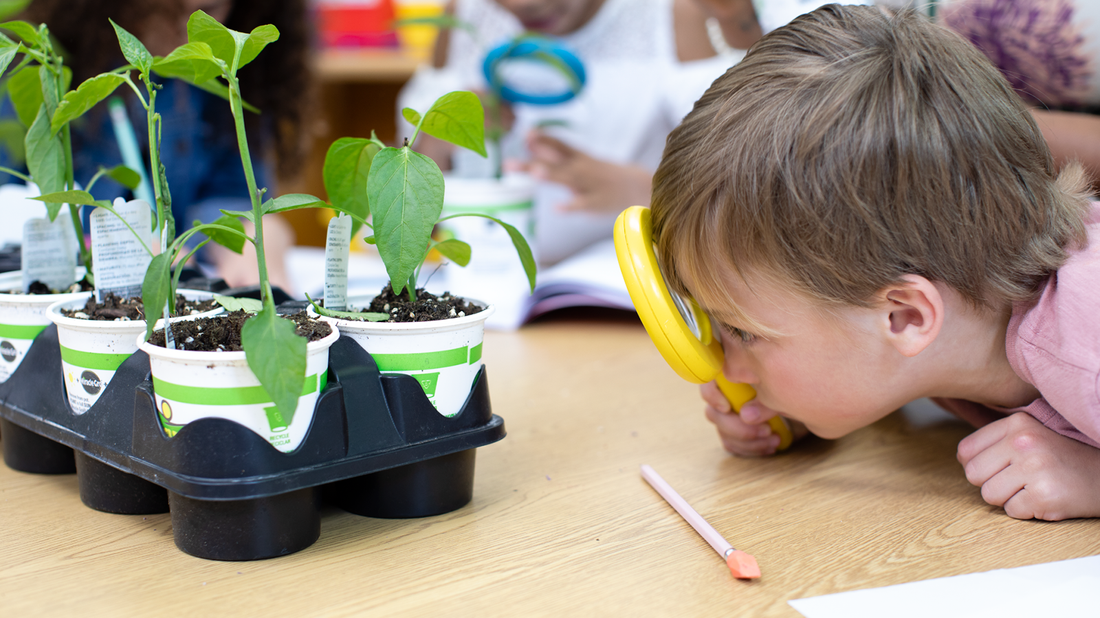 Learning by Doing: The Importance of Hands-On Science Activities