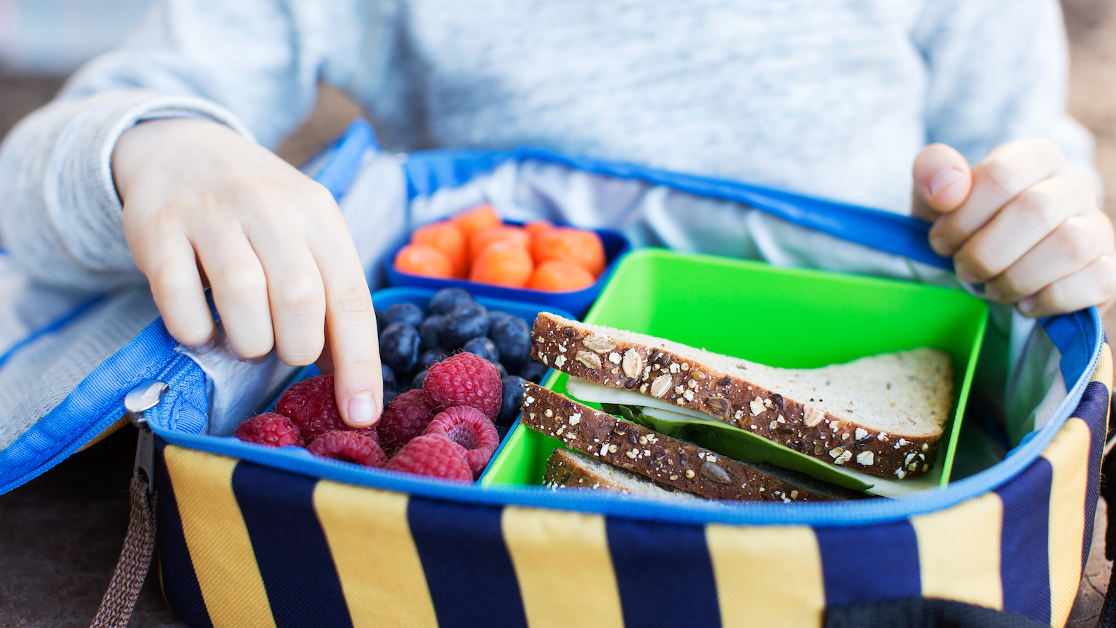 8 Nutrition Activities for Elementary and Middle School Students