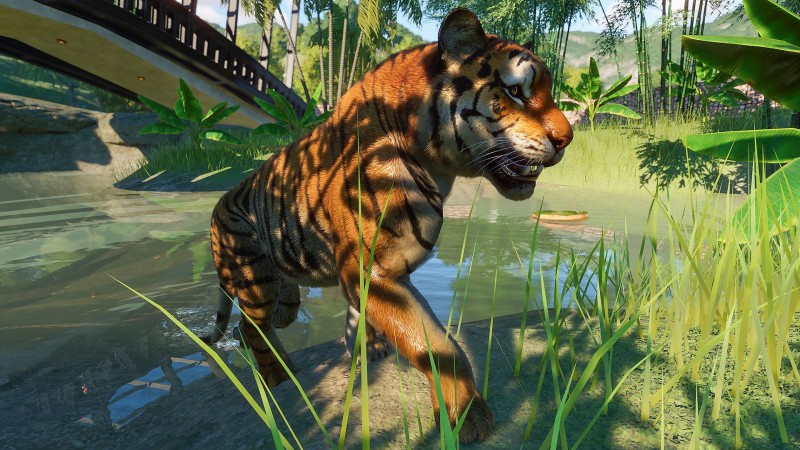 Planet Zoo Review – Wearing Down Barriers