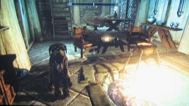 How To Get A Pet Dog In Skyrim - Game Informer