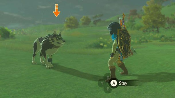 how to use an amiibo in breath of the wild