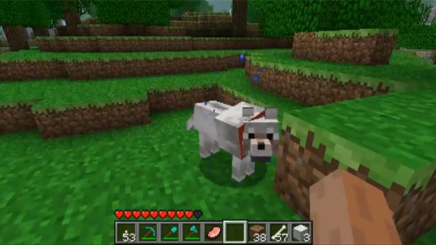 Xbox 360's Minecraft Developer Revealed - Game Informer