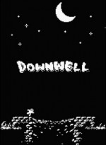 Downwell cover