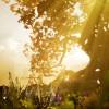 Hellblade: Senua's Sacrifice Helped Me Cope With Chronic Illness