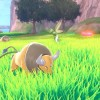 Pokémon Sword & Shield The Isle Of Armor Expansion Hits June 17