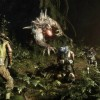 Learn The Essentials Of Evolve