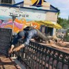 Video Shows Off The Open World Of San Francisco