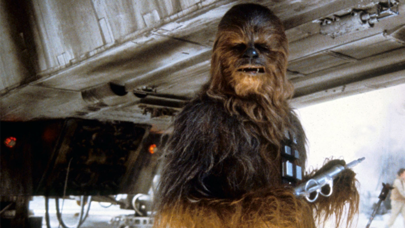 Peter Mayhew, The Original Actor For Chewbacca, Has Died