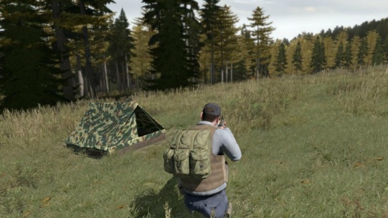 dayz could have been a free-to-play game