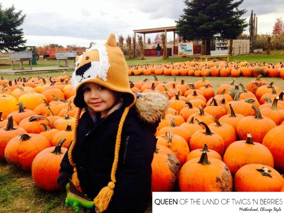 Fall family activities in Chicagoland