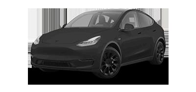 Tesla Y Cartoon Graphic