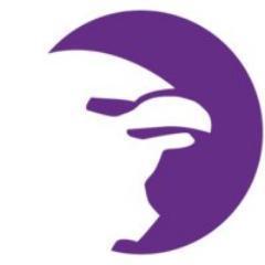 StreetHawk logo