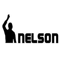 Hey Nelson logo
