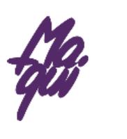 LAPIMPORT logo