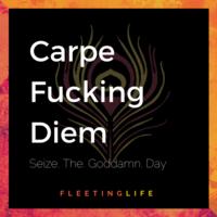 Fleetinglife