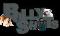 Bullyshots