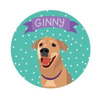 Ginnyv8