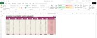 Excel doc