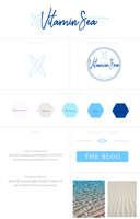 Vitamin sea branding style board