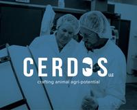 Cerdos branding 02