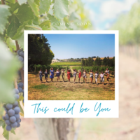 Insta teepee winery