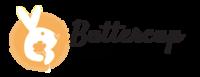 Alternate logo bcp