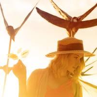 Profile photo of Crystal Schreiner