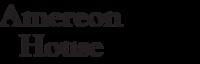 Amereon logo