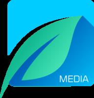 Icemint Media logo