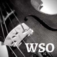 Washington Symphony Orchestra logo