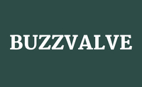 BUZZVALVE logo