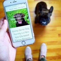Shelby Semel Dog Training  logo