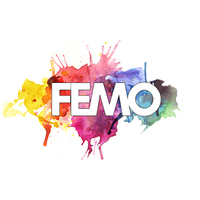 FEMO Consulting logo