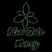 Flow State Money logo