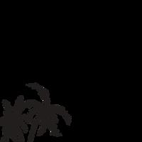 Southern Rae Living Photography logo