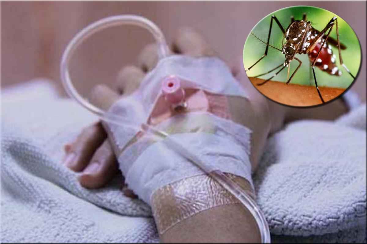 Casos de dengue en Honduras.