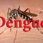 Casos dengue Honduras.